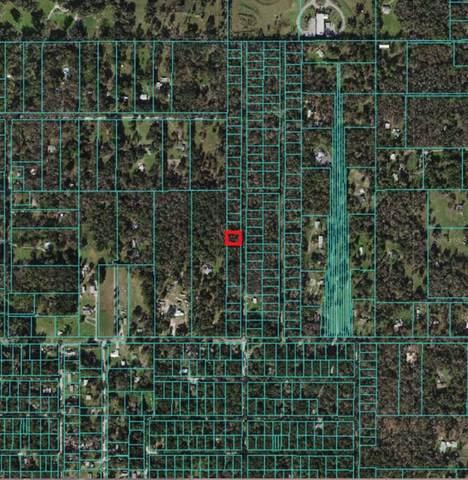 41ST TERRACE, Belleview, FL 34420 (MLS #OM628332) :: Century 21 Professional Group
