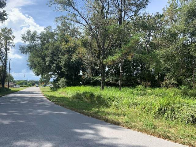 Dogwood Trail, Ocala, FL 34472 (MLS #OM628394) :: Prestige Home Realty