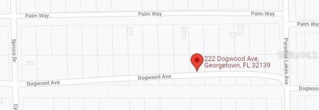 222 Dogwood Avenue, Georgetown, FL 32139 (MLS #OM628407) :: Delgado Home Team at Keller Williams