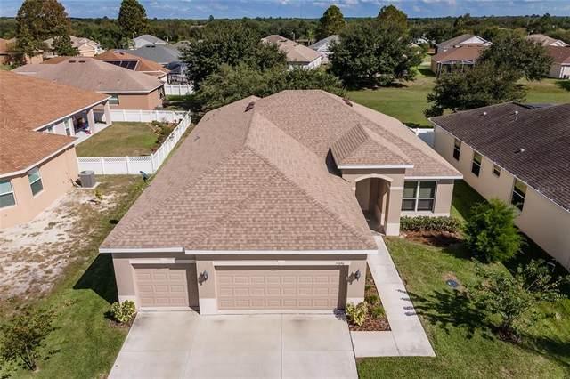 14646 Balloch Drive, Hudson, FL 34667 (MLS #OM628415) :: Global Properties Realty & Investments
