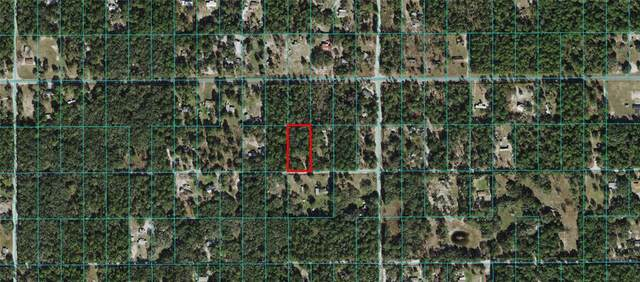 9601 SW 156TH Place, Dunnellon, FL 34432 (MLS #OM628422) :: Global Properties Realty & Investments