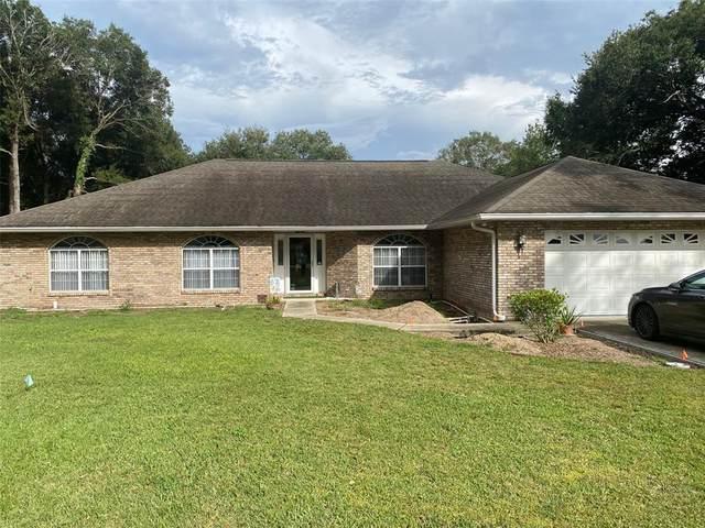 11405 SE 73RD Court, Belleview, FL 34420 (MLS #OM628498) :: Everlane Realty