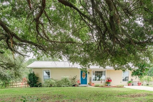 2651 NE State Road 121, Williston, FL 32696 (#OM628533) :: Caine Luxury Team