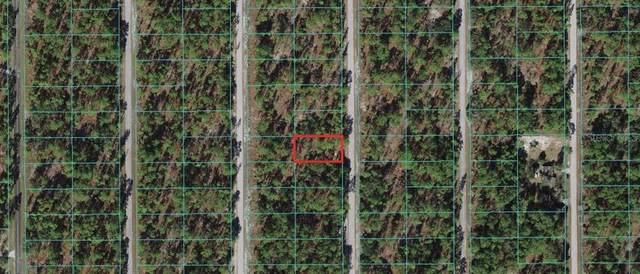 0 SW Alvarez Road, Dunnellon, FL 34430 (MLS #OM628571) :: Team Bohannon