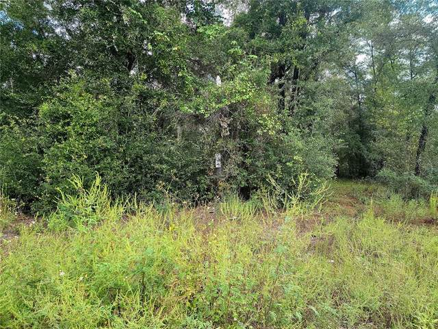 NE 104 Court, Bronson, FL 32621 (MLS #OM628574) :: Pristine Properties