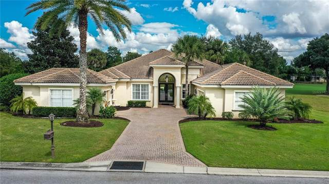 6609 SW 179TH AVENUE Road, Dunnellon, FL 34432 (MLS #OM628576) :: Global Properties Realty & Investments