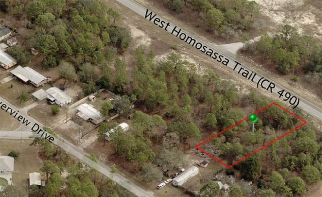5149 W Homosassa Trail, Lecanto, FL 34461 (MLS #OM628596) :: Stellar Home Sales
