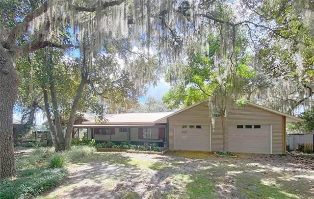 15161 NE 244TH Terrace, Salt Springs, FL 32134 (MLS #OM628598) :: McConnell and Associates
