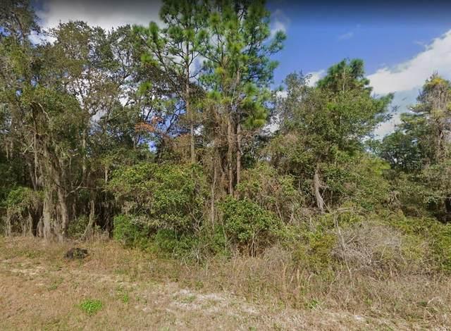 797 W Wheeling Lane, Hernando, FL 34442 (MLS #OM628607) :: Delgado Home Team at Keller Williams