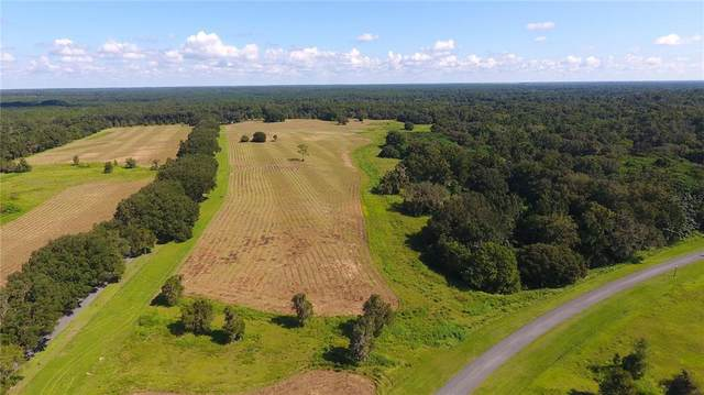 0 SE 116 Place, Ocala, FL 34480 (MLS #OM628716) :: Global Properties Realty & Investments