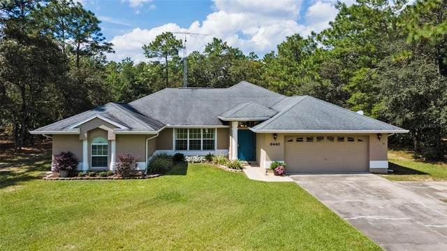 6440 SW 135TH TERRACE Road, Ocala, FL 34481 (MLS #OM628720) :: Global Properties Realty & Investments