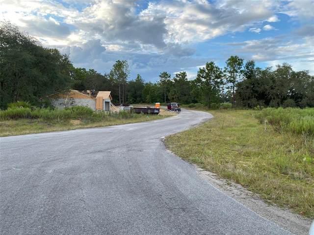 Lot 4 Malauka Circle, Ocklawaha, FL 32179 (MLS #OM628755) :: American Premier Realty LLC