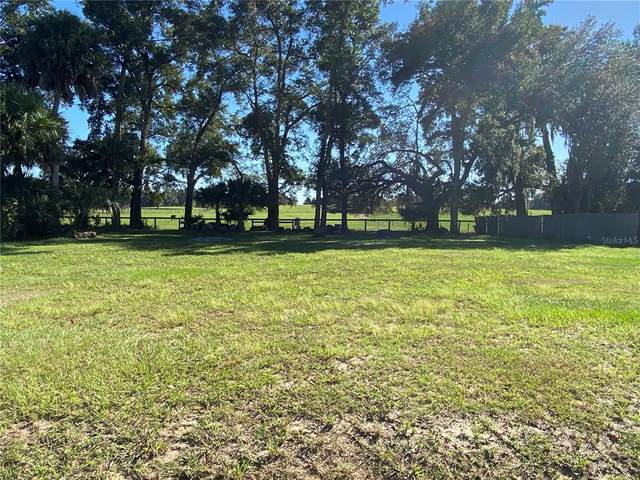 00 SE 149TH Place, Summerfield, FL 34491 (MLS #OM628757) :: The Duncan Duo Team