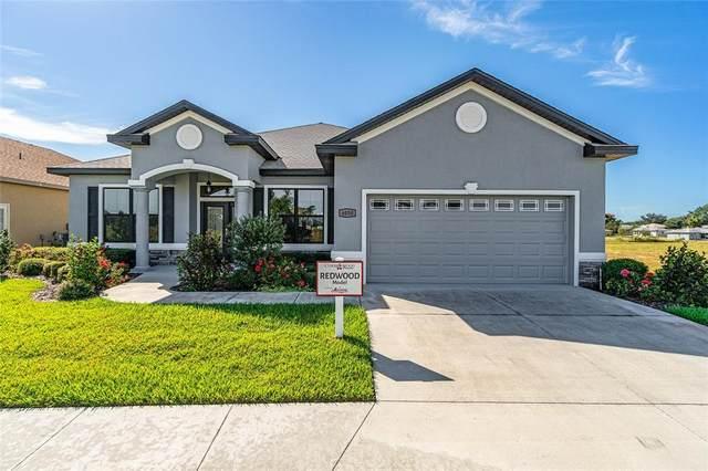 6050 SW 97TH Street, Ocala, FL 34476 (MLS #OM628775) :: Rabell Realty Group