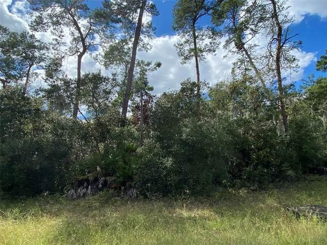 SW 31 TERR RD, Ocala, FL 34473 (MLS #OM628835) :: Global Properties Realty & Investments