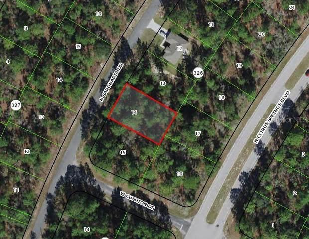 9169 N Saponaria Drive, Citrus Springs, FL 34433 (MLS #OM628838) :: Armel Real Estate