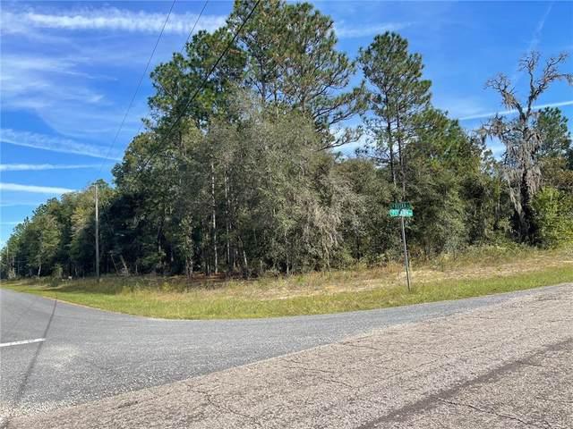 266 W Ruska Place, Citrus Springs, FL 34434 (MLS #OM628844) :: Armel Real Estate