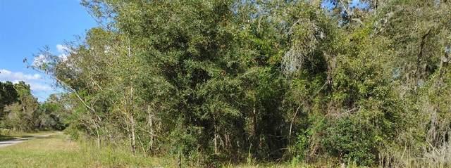 TBD SE 25TH ST, Morriston, FL 32668 (MLS #OM628895) :: Everlane Realty