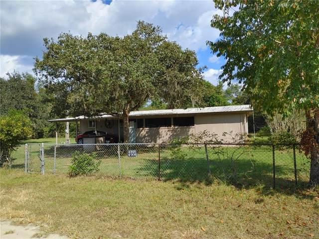 23235 NE 154TH Terrace, Fort Mc Coy, FL 32134 (MLS #OM628905) :: RE/MAX Local Expert