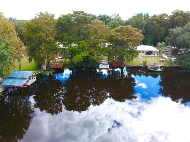 10137 E Minnow Court, Inverness, FL 34450 (MLS #OM628912) :: Griffin Group