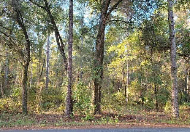 LOT 53 SW 57TH PLACE, Dunnellon, FL 34432 (MLS #OM628924) :: Keller Williams Realty Peace River Partners