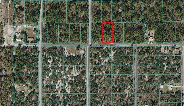 Indian Hill Drive, Dunnellon, FL 34431 (MLS #OM628929) :: Keller Williams Realty Peace River Partners