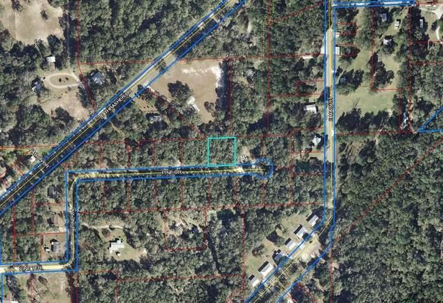 285 Pine Drive, Bronson, FL 32621 (MLS #OM628973) :: Pristine Properties