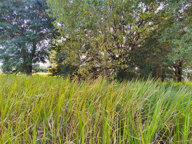 22 Dogwood Drive Loop, Ocala, FL 34472 (MLS #OM628997) :: Stellar Home Sales