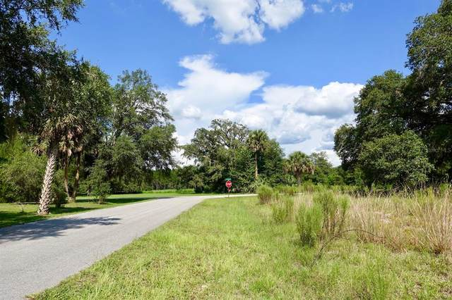 0001 SW 175TH Court, Dunnellon, FL 34432 (MLS #OM629021) :: Carmena and Associates Realty Group