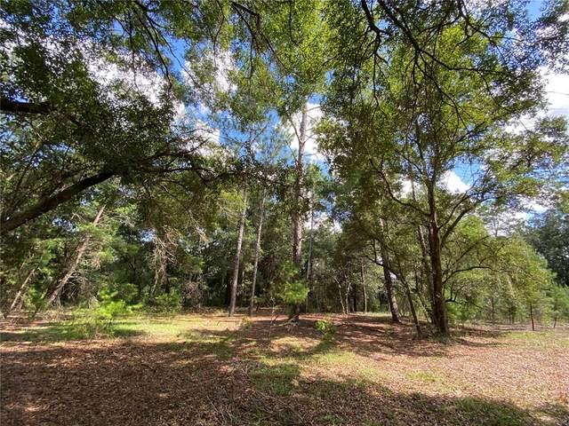 15290 NE 40TH Street, Williston, FL 32696 (MLS #OM629026) :: Charles Rutenberg Realty