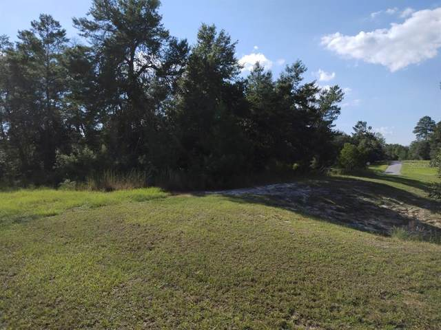 0 SW 148TH PLACE Road, Ocala, FL 34473 (MLS #OM629035) :: Vacasa Real Estate