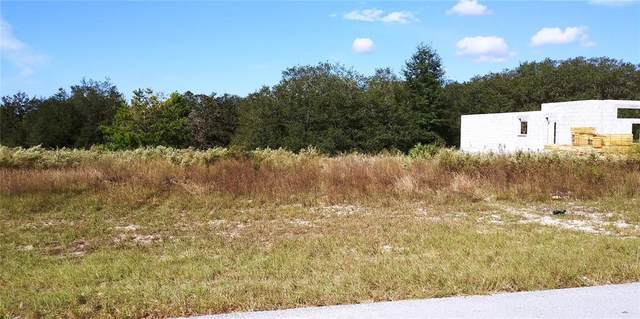 56 TERR, Ocala, FL 34473 (MLS #OM629048) :: Prestige Home Realty