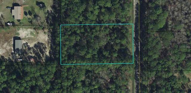 2122 Laurel Avenue, Bunnell, FL 32110 (MLS #OM629103) :: Everlane Realty