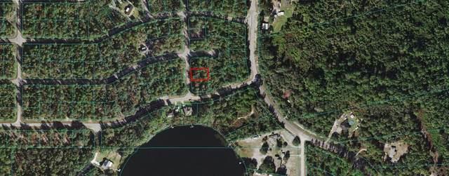 0 Fisher Run Course, Ocklawaha, FL 32179 (MLS #OM629128) :: The Light Team