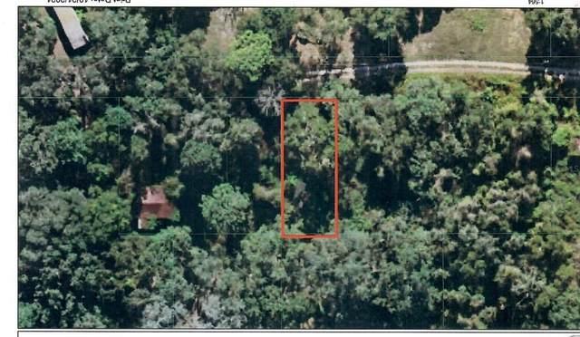 18941 SE 106TH Street, Ocklawaha, FL 32179 (MLS #OM629141) :: SunCoast Home Experts