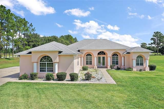 5815 NE 70TH Street, Silver Springs, FL 34488 (MLS #OM629146) :: McConnell and Associates