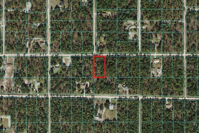 0 SW 78TH Place, Dunnellon, FL 34432 (MLS #OM629150) :: Keller Williams Realty Peace River Partners