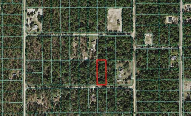 Dunnellon, FL 34432 :: Stiver Firth International
