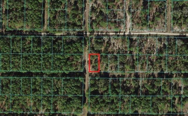 0 SW 19TH Place, Ocala, FL 34481 (MLS #OM629159) :: Prestige Home Realty