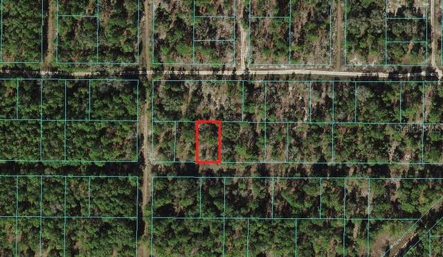 Ocala, FL 34481 :: Prestige Home Realty