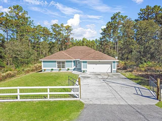 24113 NW Water Oak Avenue, Dunnellon, FL 34431 (MLS #OM629234) :: Keller Williams Realty Peace River Partners