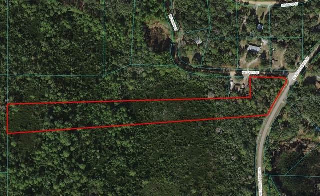 NE 103RD COURT Road, Fort Mc Coy, FL 32134 (MLS #OM629245) :: McConnell and Associates