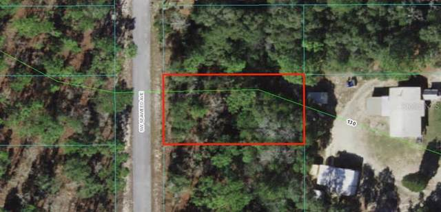 SW Seaweed Avenue, Dunnellon, FL 34431 (MLS #OM629251) :: Sarasota Property Group at NextHome Excellence