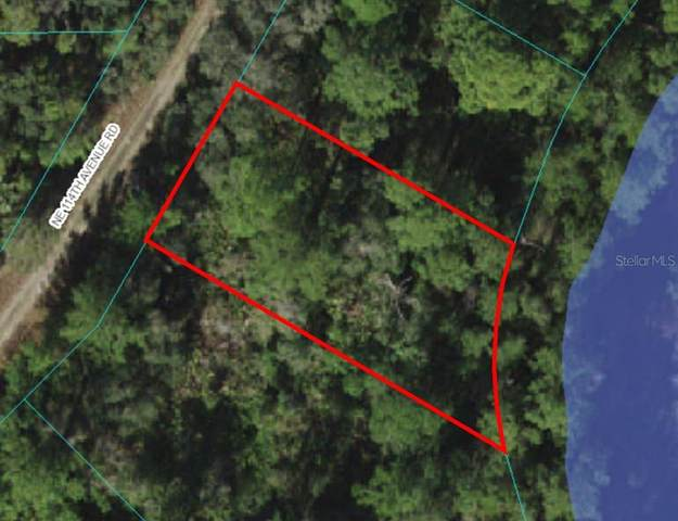 Lot 19 NE 114TH AVE Road, Fort Mc Coy, FL 32134 (MLS #OM629296) :: McConnell and Associates