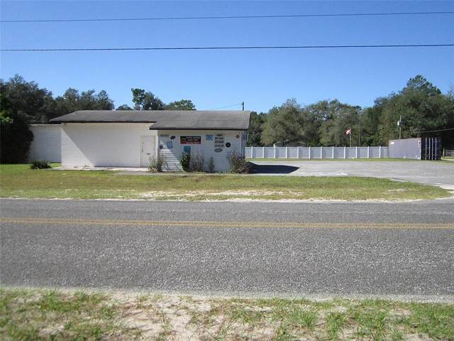 14680 NE 150TH Avenue, Fort Mc Coy, FL 32134 (MLS #OM629428) :: McConnell and Associates