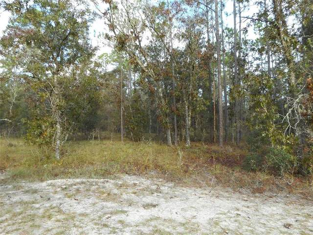 Tract 3 SW Remora Lane, Dunnellon, FL 34431 (MLS #OM629476) :: Century 21 Professional Group