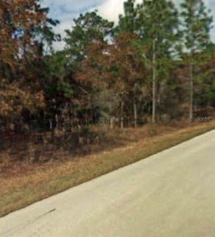 Lot 23 NW Redwood Drive, Dunnellon, FL 34431 (MLS #OM629479) :: Century 21 Professional Group