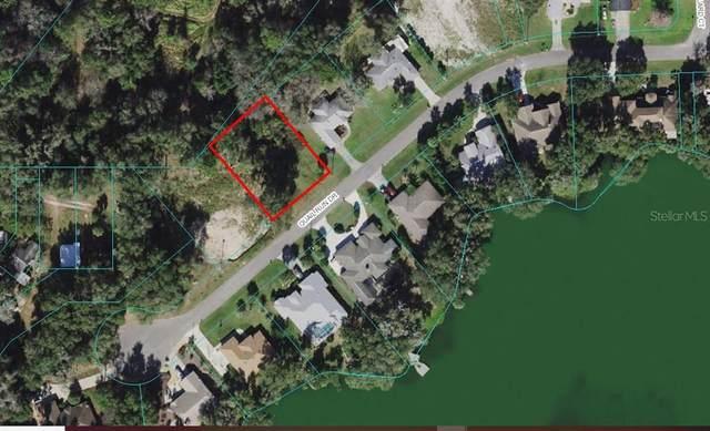 TBD Quail Run Drive, Dunnellon, FL 34432 (MLS #OM629495) :: Future Home Realty