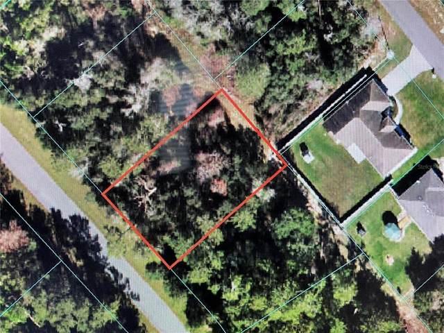 000 SW 24 COURT Road, Ocala, FL 34473 (MLS #OM629518) :: Orlando Homes Finder Team
