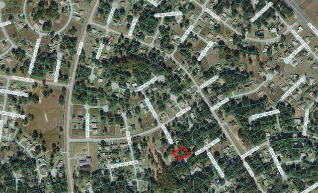 00 Cedar Tree Pass, Ocala, FL 34472 (MLS #OM629529) :: Keller Williams Realty Select